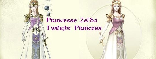 zelda-tp-costume.jpg